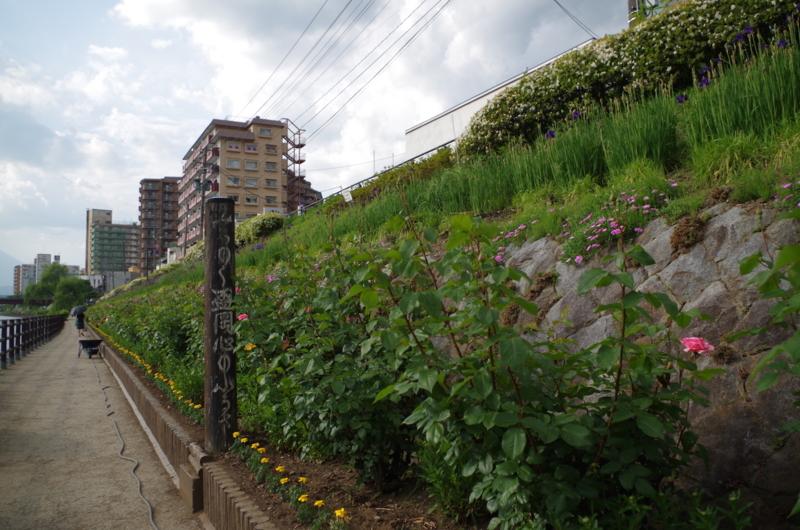 f:id:oishiioyatu:20160602192139j:plain