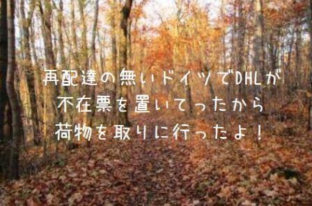 f:id:oishiiringo:20181128195127j:plain