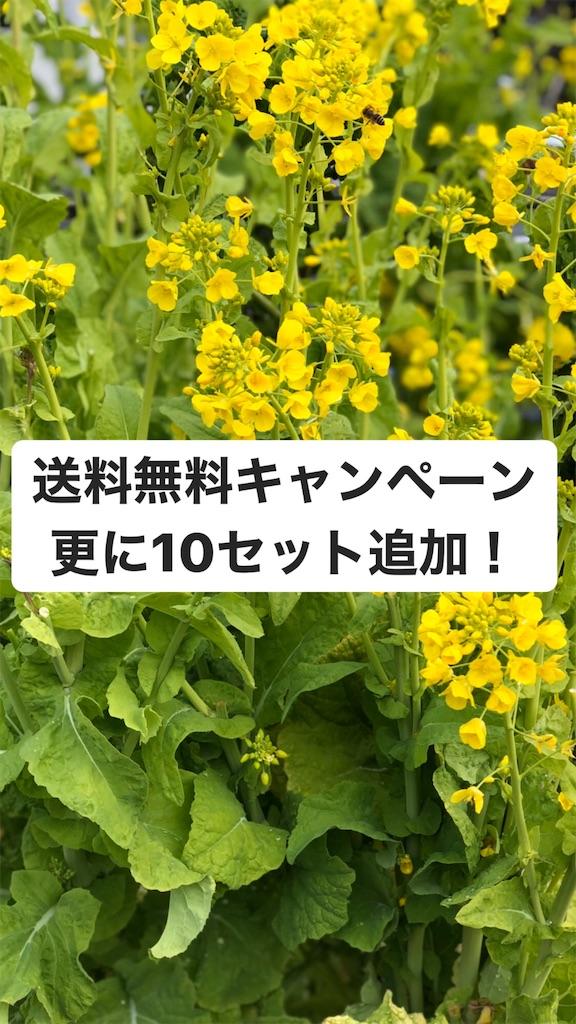 f:id:oishiisoup:20200312144028j:image
