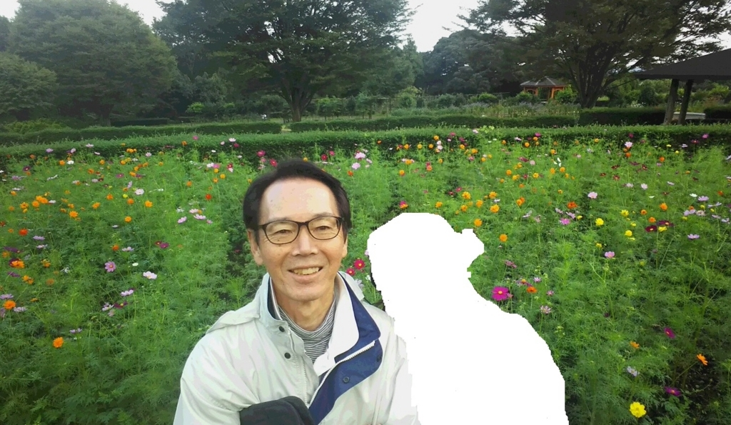 f:id:oisomachi-konkatsu-kekkon:20171007144205j:plain