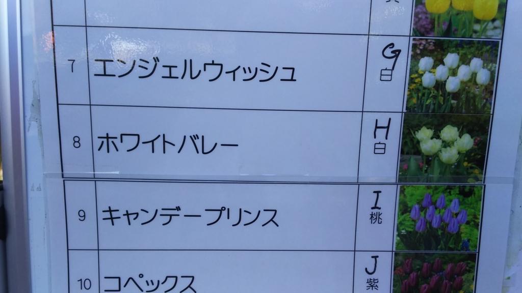 f:id:oisomachi-konkatsu-kekkon:20171102210342j:plain