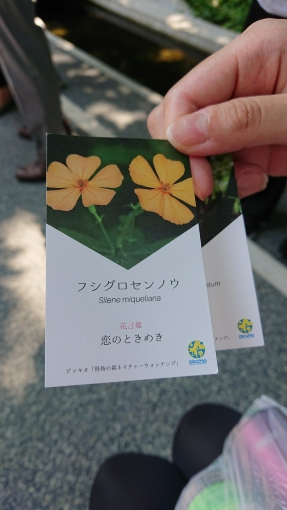 f:id:oisomachi-konkatsu-kekkon:20180804190322j:plain