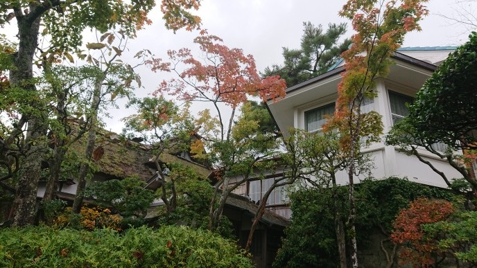 f:id:oisomachi-konkatsu-kekkon:20181108171946j:plain