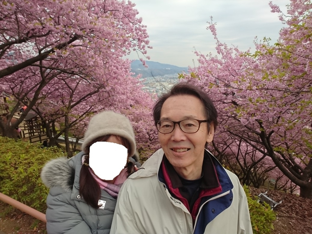 f:id:oisomachi-konkatsu-kekkon:20190228174356j:plain