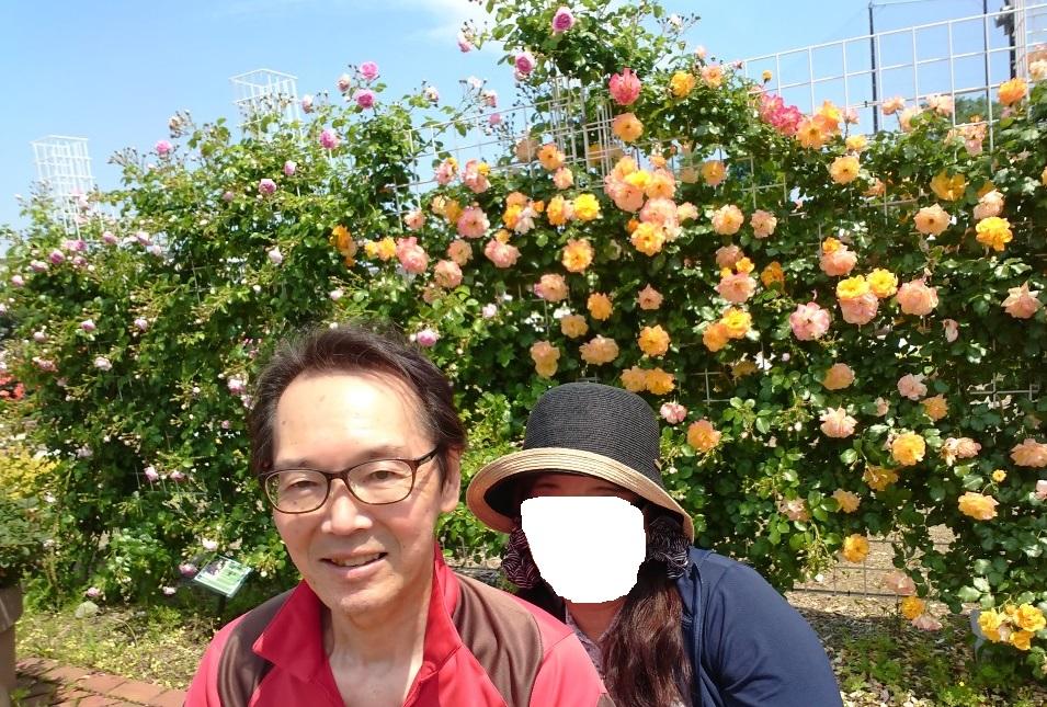 f:id:oisomachi-konkatsu-kekkon:20190525135024j:plain