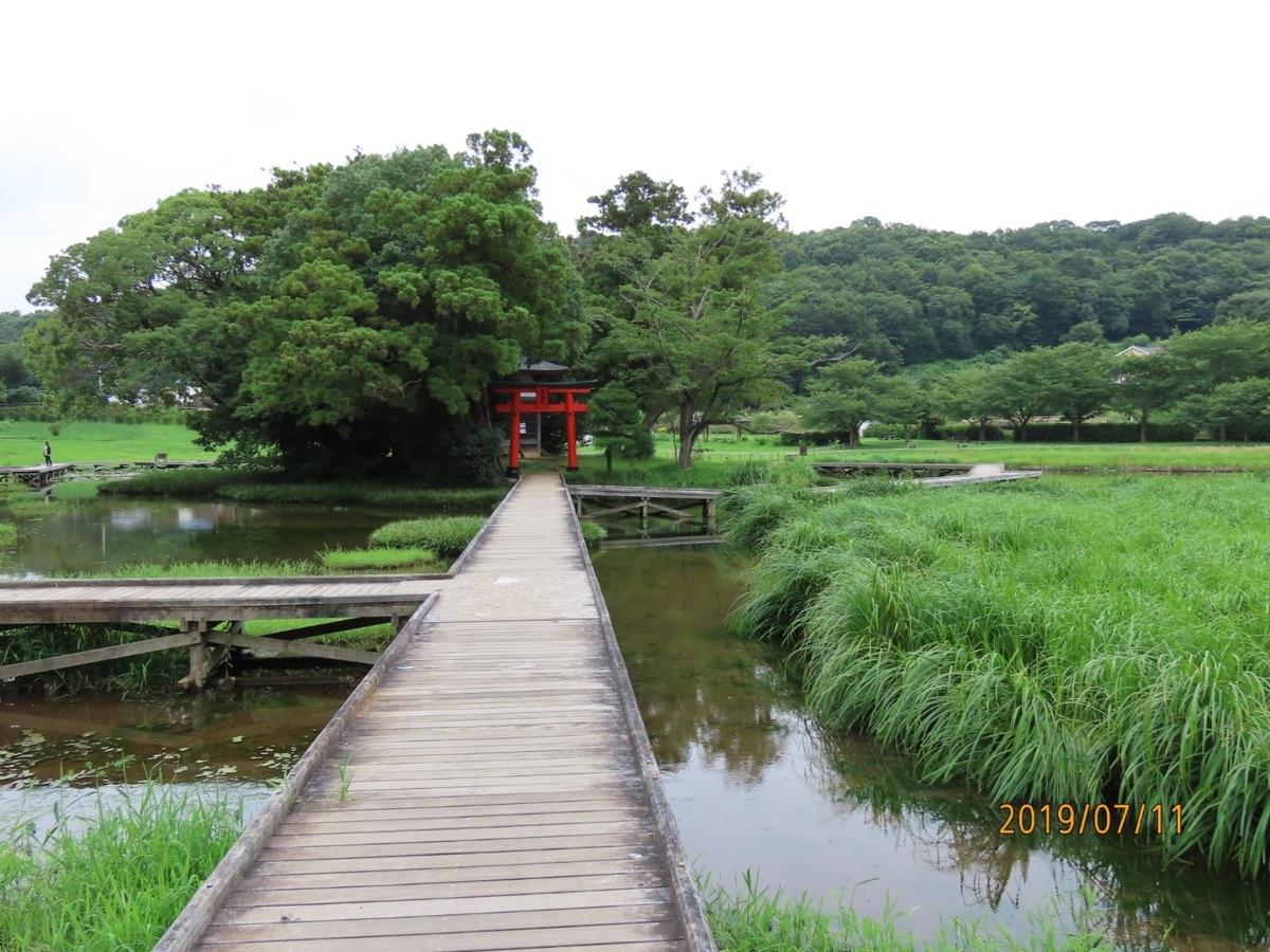 f:id:oisomachi-konkatsu-kekkon:20190712215753j:plain