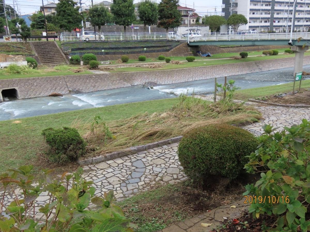 f:id:oisomachi-konkatsu-kekkon:20191017165532j:plain