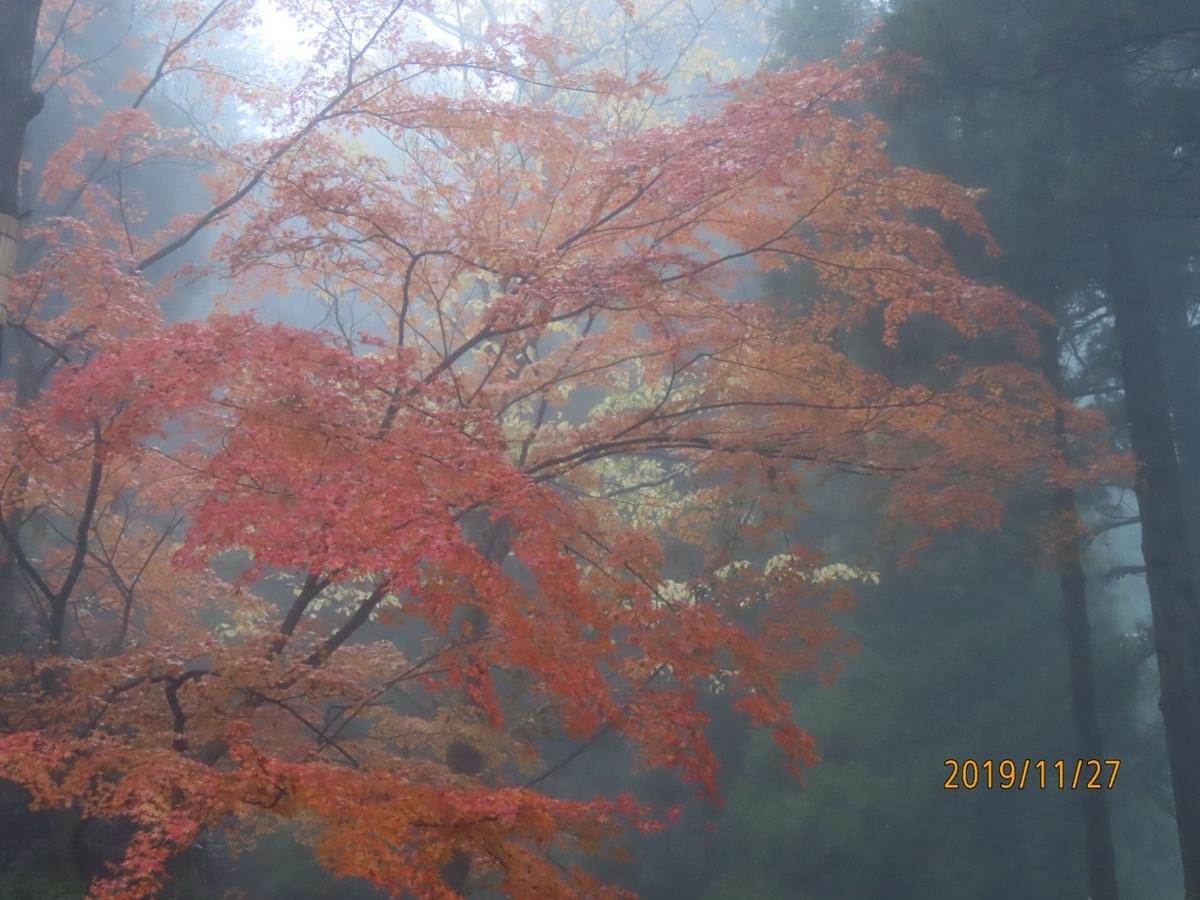f:id:oisomachi-konkatsu-kekkon:20191130213853j:plain