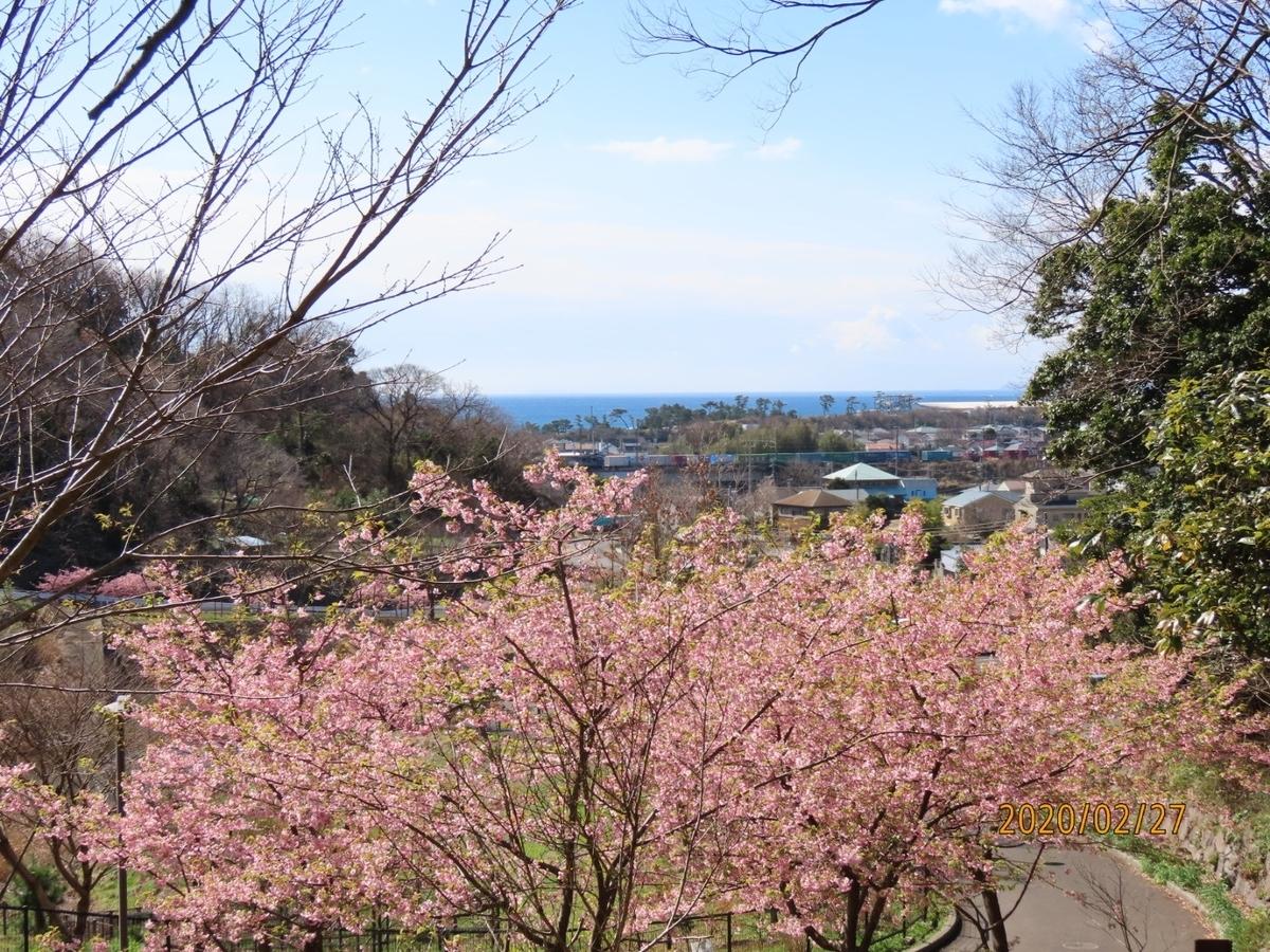 f:id:oisomachi-konkatsu-kekkon:20200227104328j:plain