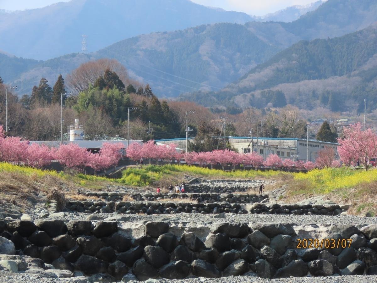 f:id:oisomachi-konkatsu-kekkon:20200307140359j:plain