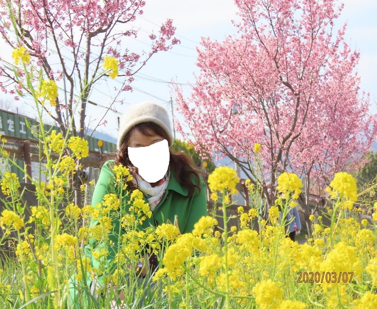 f:id:oisomachi-konkatsu-kekkon:20200307140849j:plain