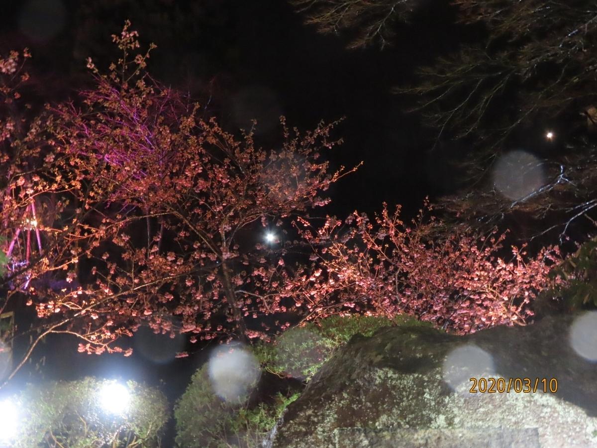 f:id:oisomachi-konkatsu-kekkon:20200310185240j:plain