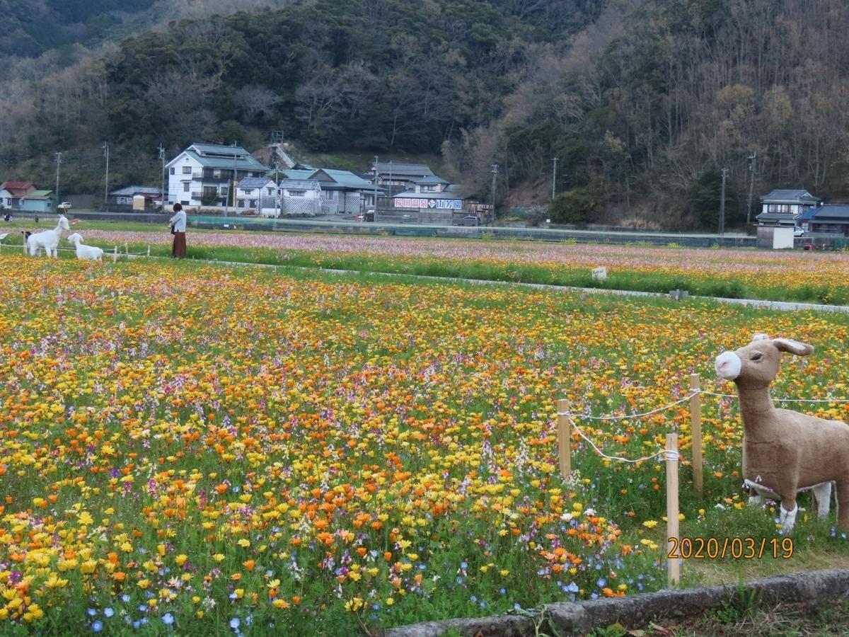 f:id:oisomachi-konkatsu-kekkon:20200320222210j:plain