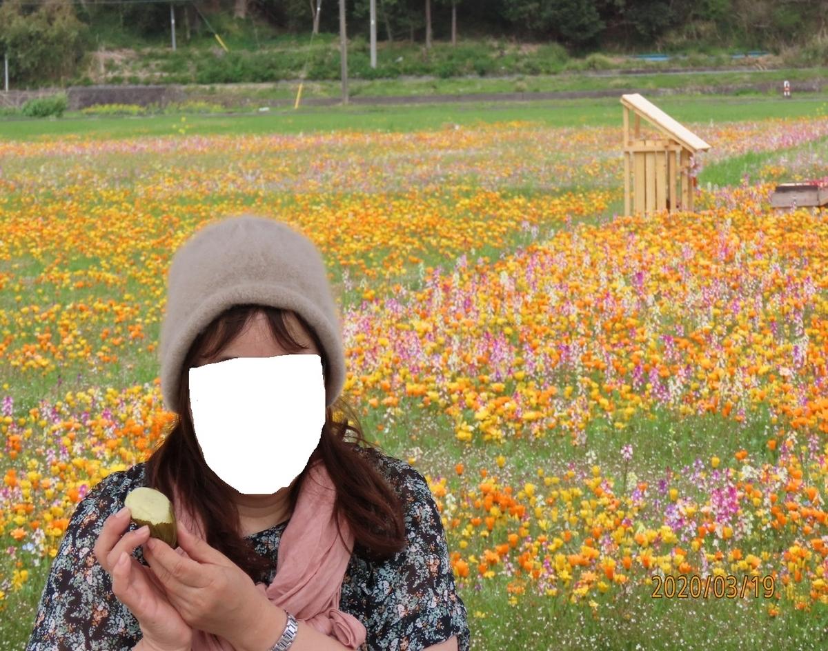 f:id:oisomachi-konkatsu-kekkon:20200320222225j:plain