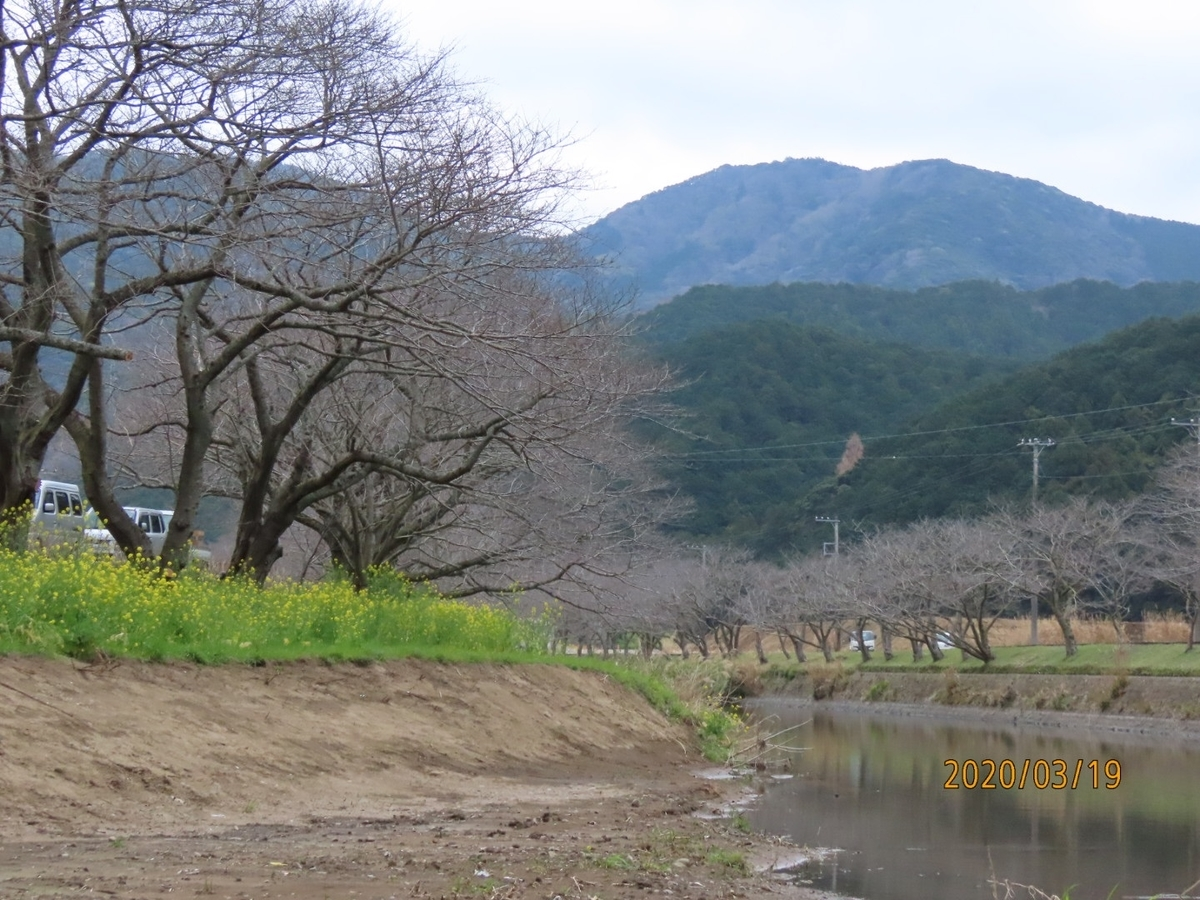 f:id:oisomachi-konkatsu-kekkon:20200320222600j:plain
