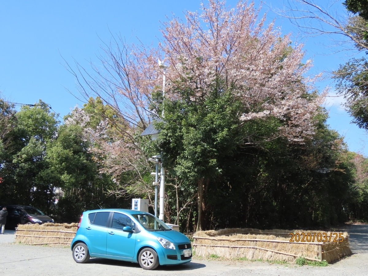 f:id:oisomachi-konkatsu-kekkon:20200326214446j:plain