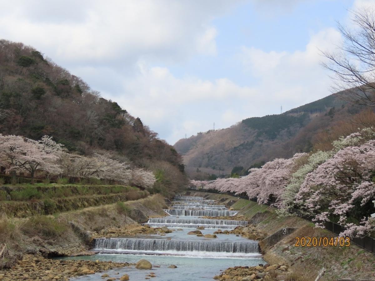 f:id:oisomachi-konkatsu-kekkon:20200407120218j:plain