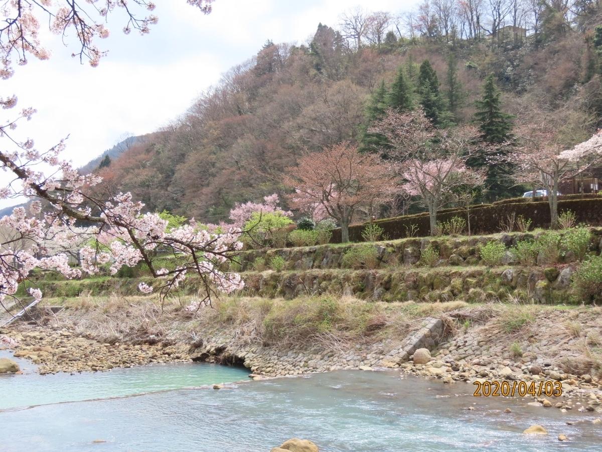 f:id:oisomachi-konkatsu-kekkon:20200407120355j:plain