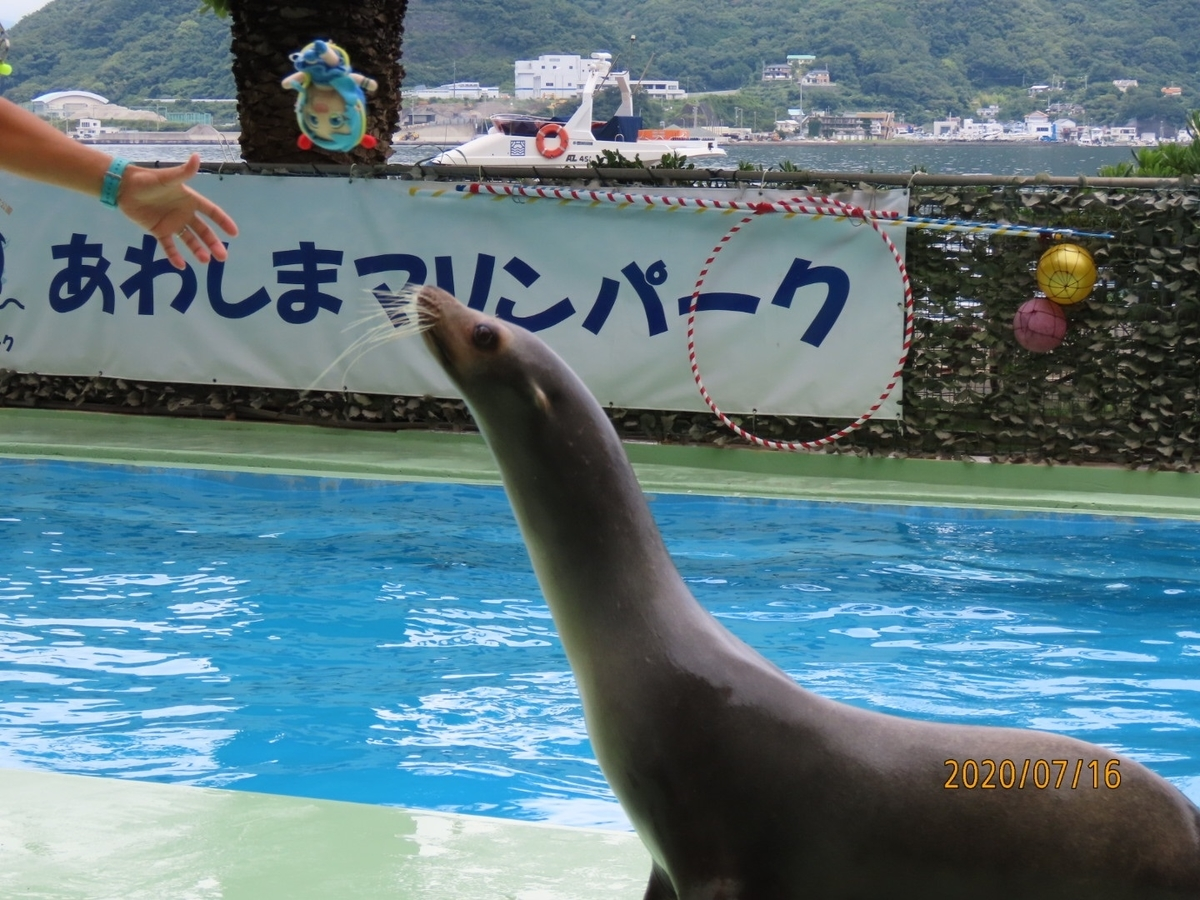 f:id:oisomachi-konkatsu-kekkon:20200717232618j:plain