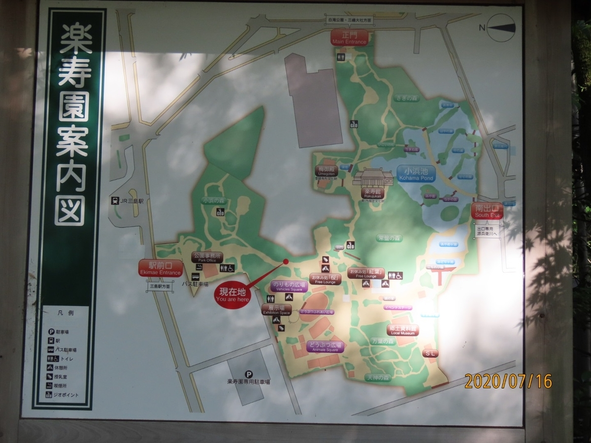 f:id:oisomachi-konkatsu-kekkon:20200717233642j:plain