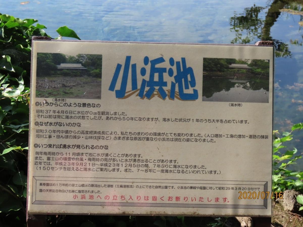 f:id:oisomachi-konkatsu-kekkon:20200717233706j:plain