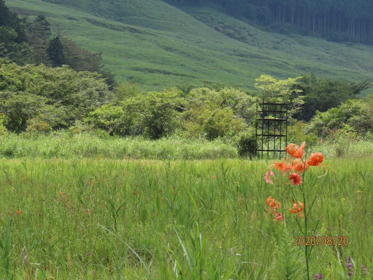 f:id:oisomachi-konkatsu-kekkon:20200828210211j:plain