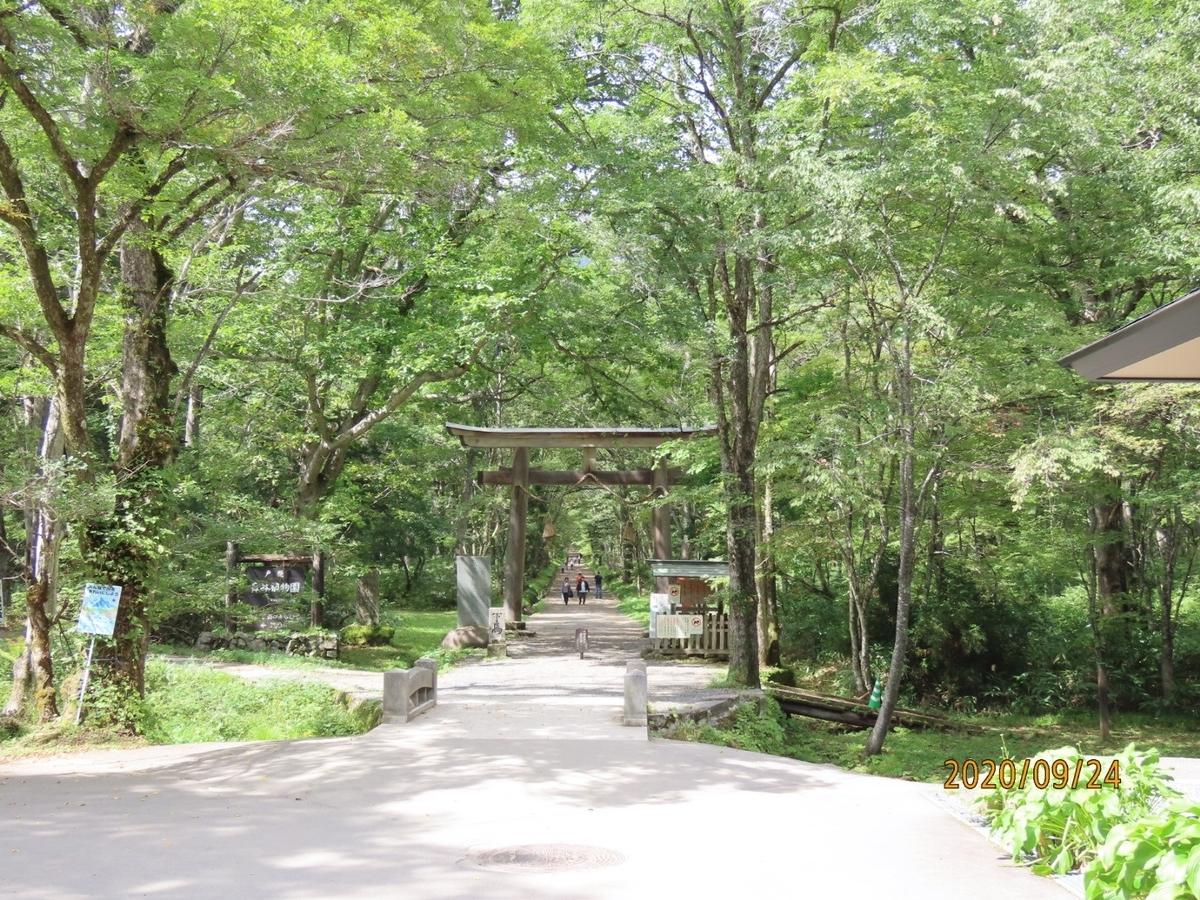 f:id:oisomachi-konkatsu-kekkon:20200929202855j:plain
