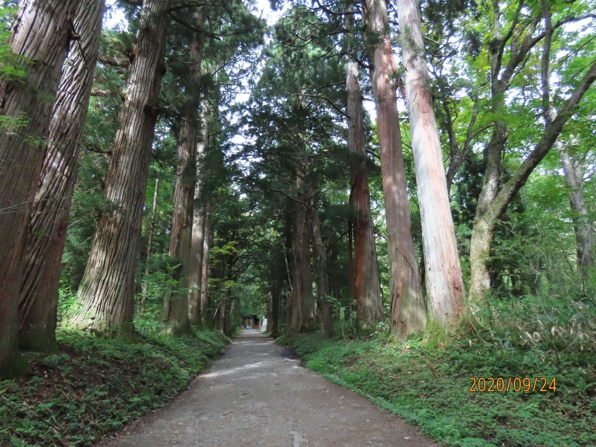 f:id:oisomachi-konkatsu-kekkon:20200929202952j:plain