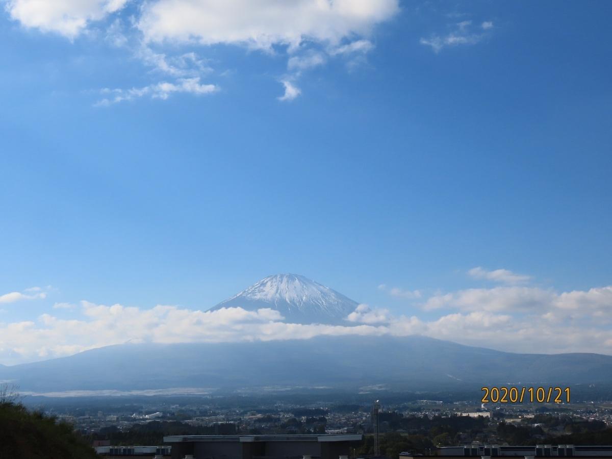 f:id:oisomachi-konkatsu-kekkon:20201022195623j:plain