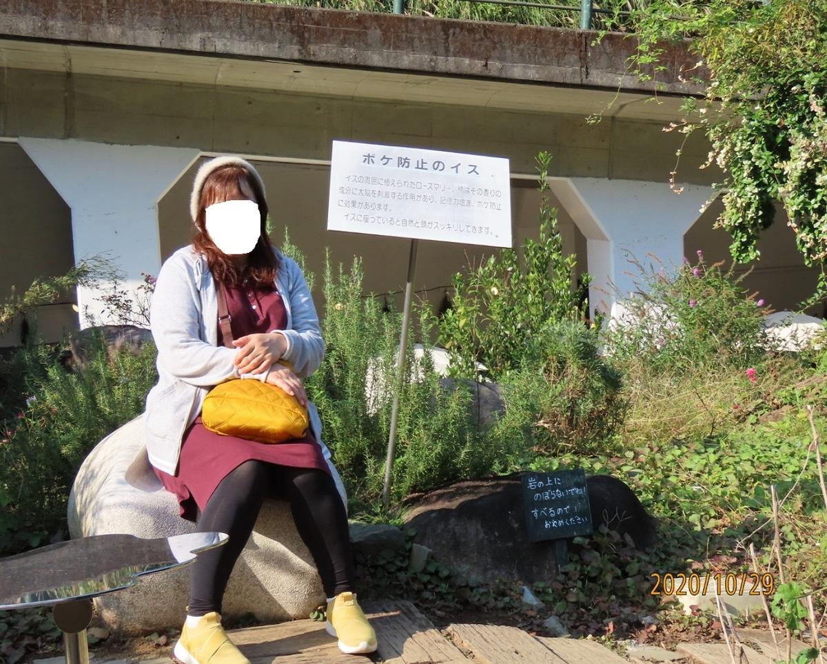f:id:oisomachi-konkatsu-kekkon:20201102102448j:plain