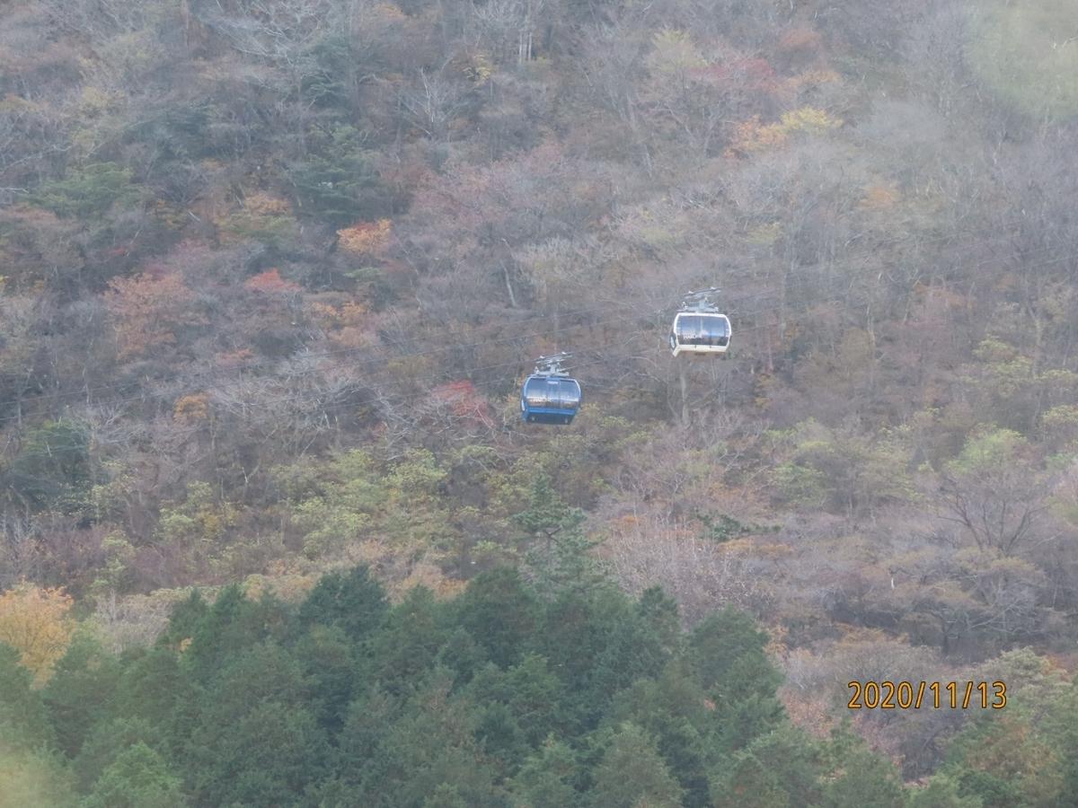 f:id:oisomachi-konkatsu-kekkon:20201117191437j:plain