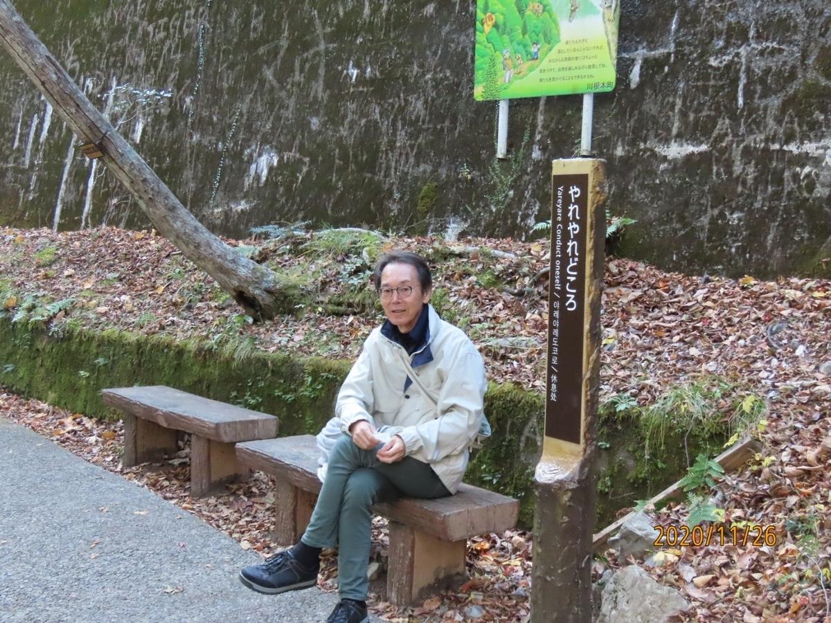 f:id:oisomachi-konkatsu-kekkon:20201203015540j:plain