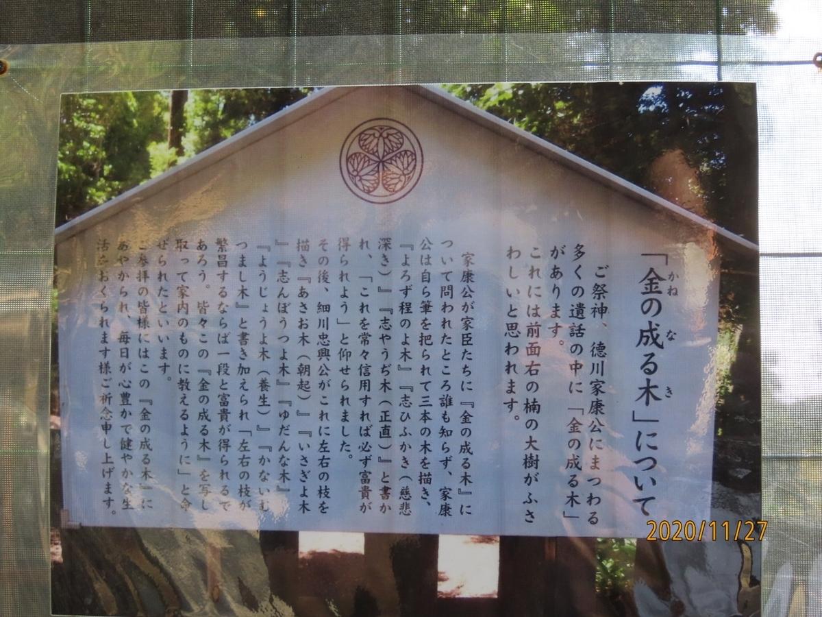 f:id:oisomachi-konkatsu-kekkon:20201203020916j:plain