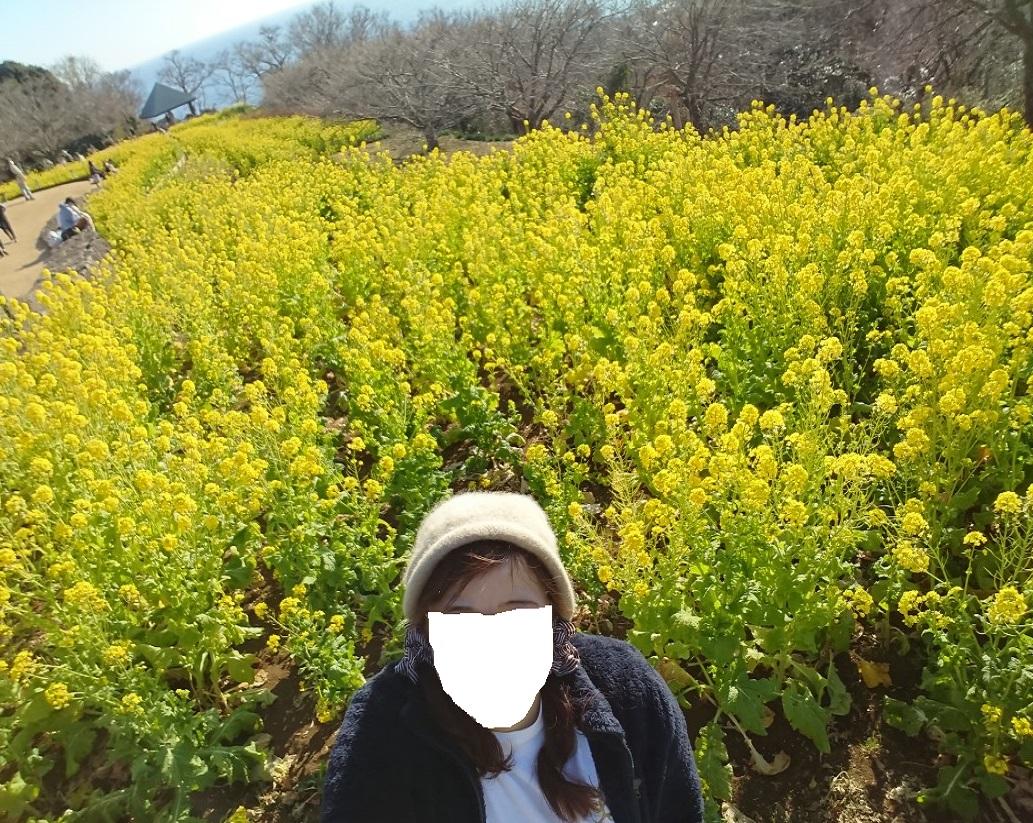 f:id:oisomachi-konkatsu-kekkon:20210115213404j:plain