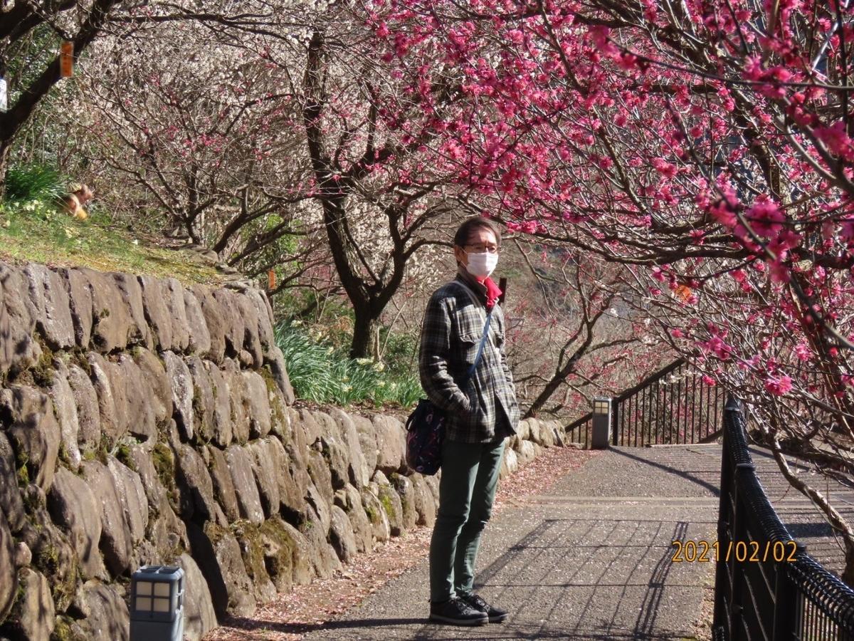f:id:oisomachi-konkatsu-kekkon:20210206182109j:plain