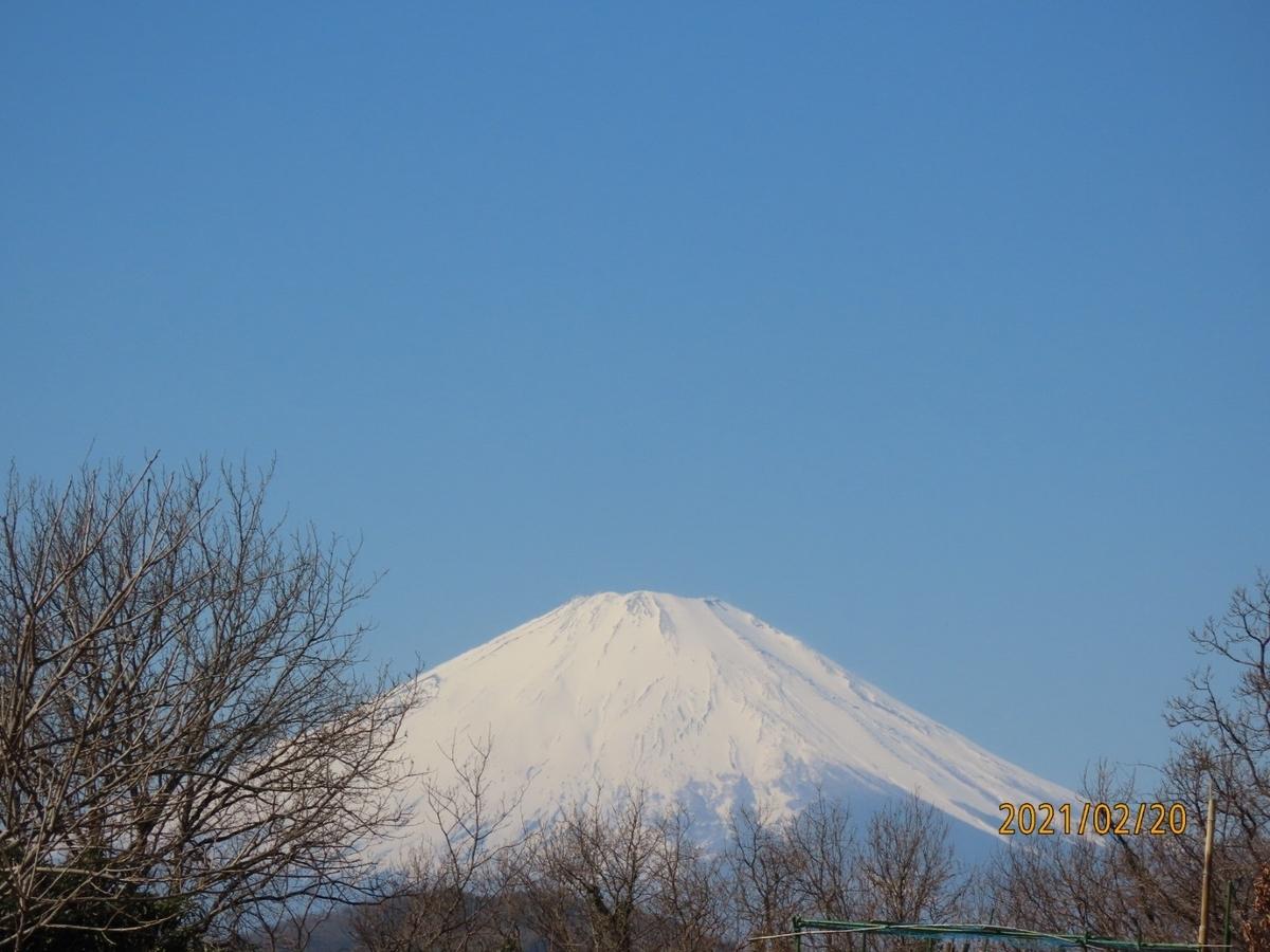 f:id:oisomachi-konkatsu-kekkon:20210227153612j:plain