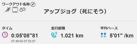 f:id:oiyan-run:20181226111944j:plain