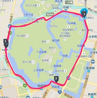 f:id:oiyan-run:20190713132303j:plain