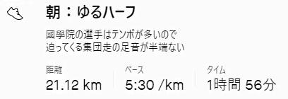 f:id:oiyan-run:20210619121417j:plain