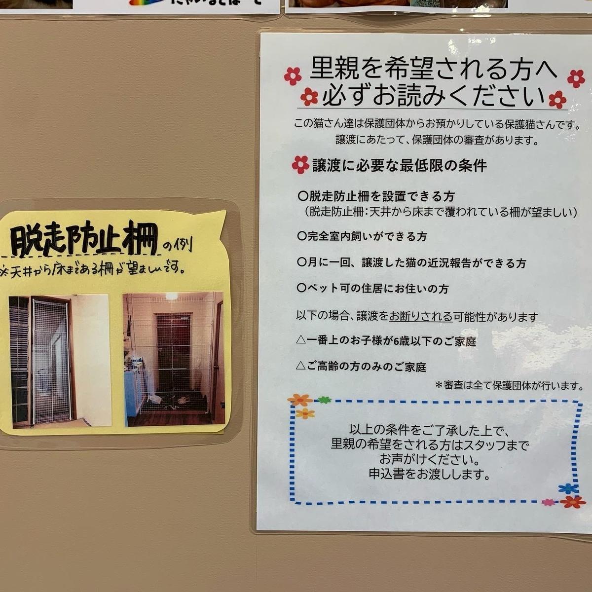 f:id:oizumigakuen:20210218113635j:plain