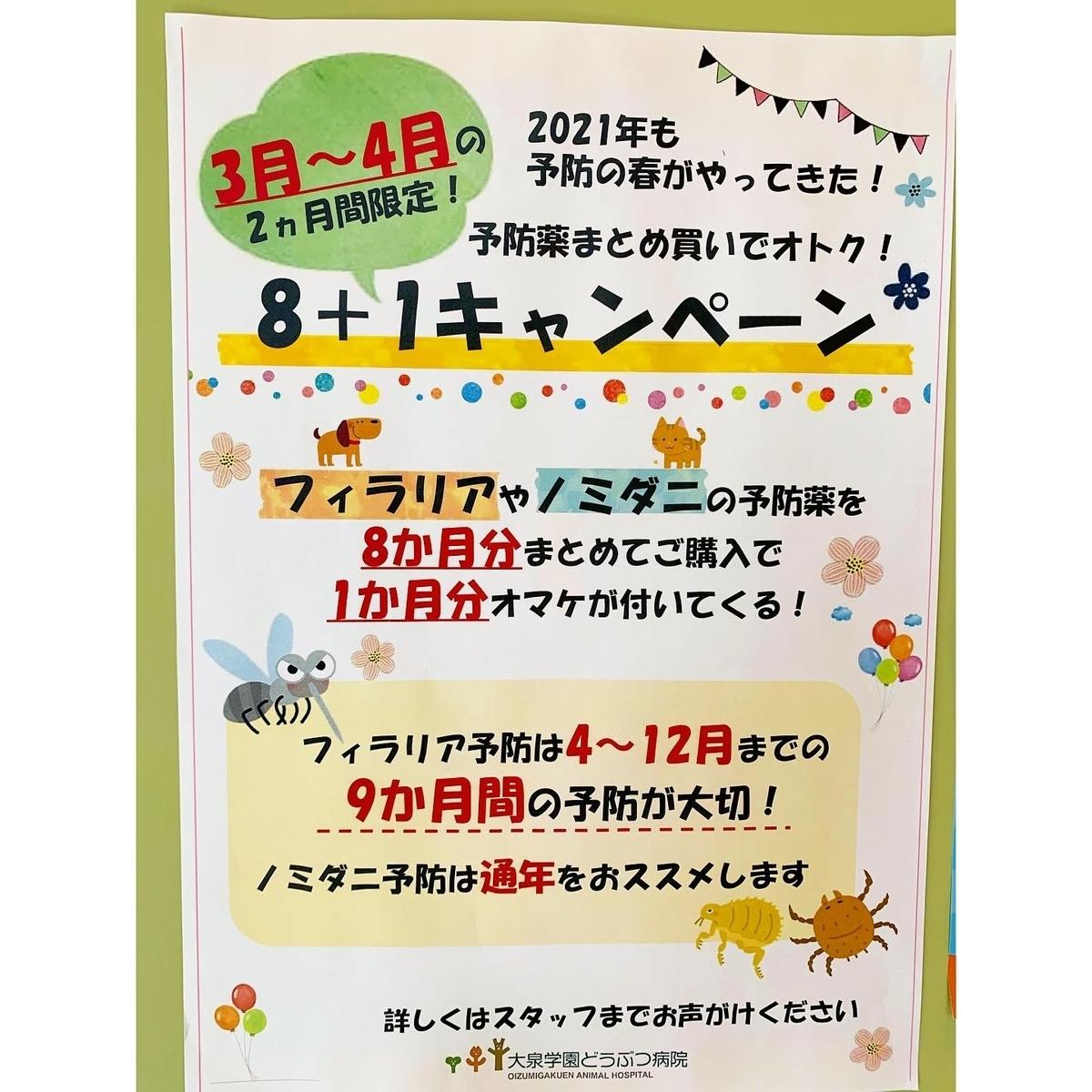 f:id:oizumigakuen:20210309172248j:plain