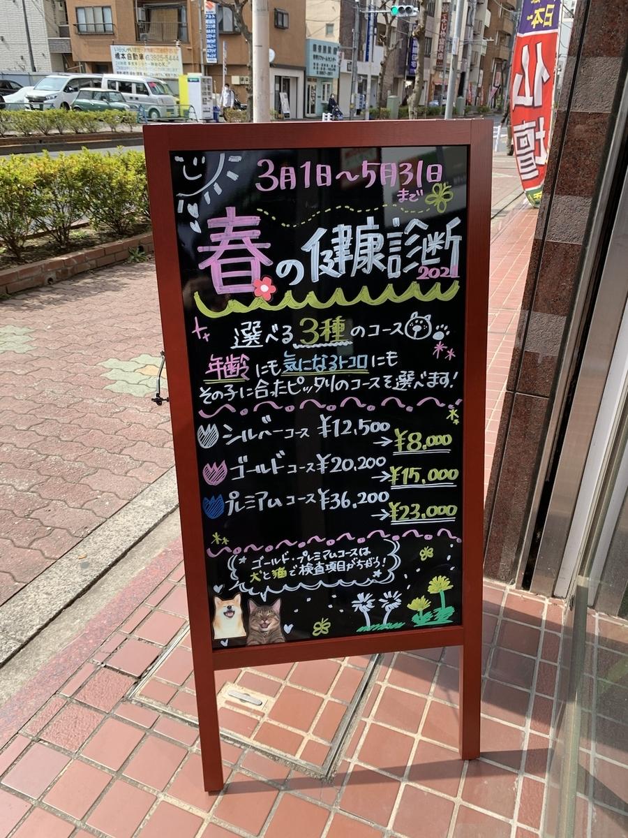 f:id:oizumigakuen:20210311155655j:plain