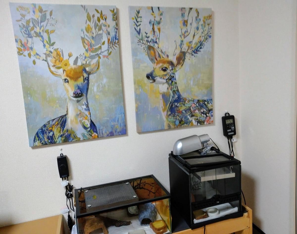 IKEAの鹿設置後