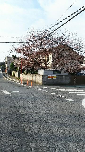 f:id:ojiinaoto:20170402075047j:image