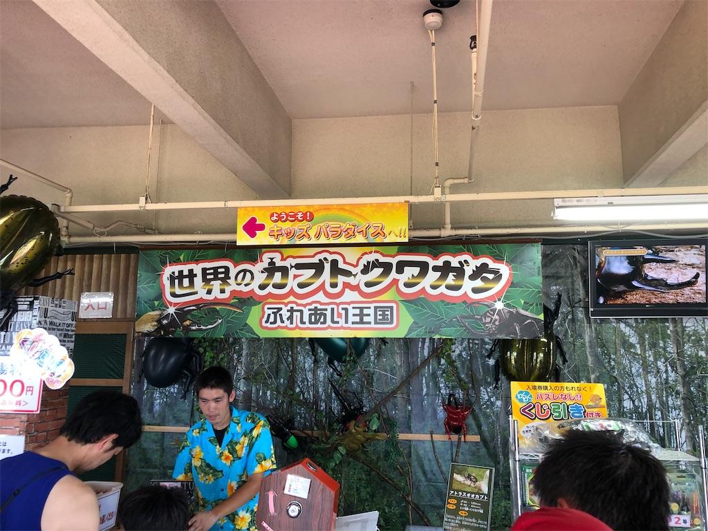f:id:ok-kimama:20190817153015j:image