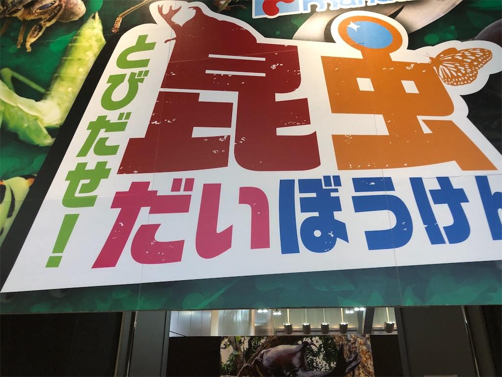 f:id:ok-kimama:20190817161756j:image