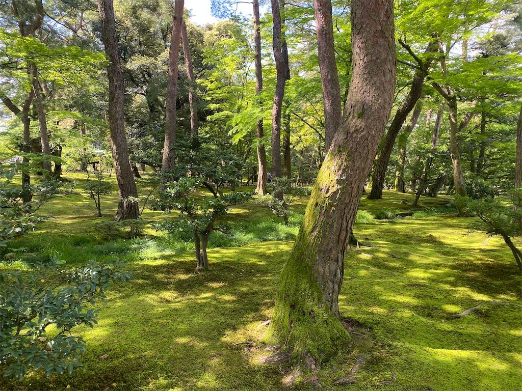 f:id:ok-kimama:20210504085039j:image