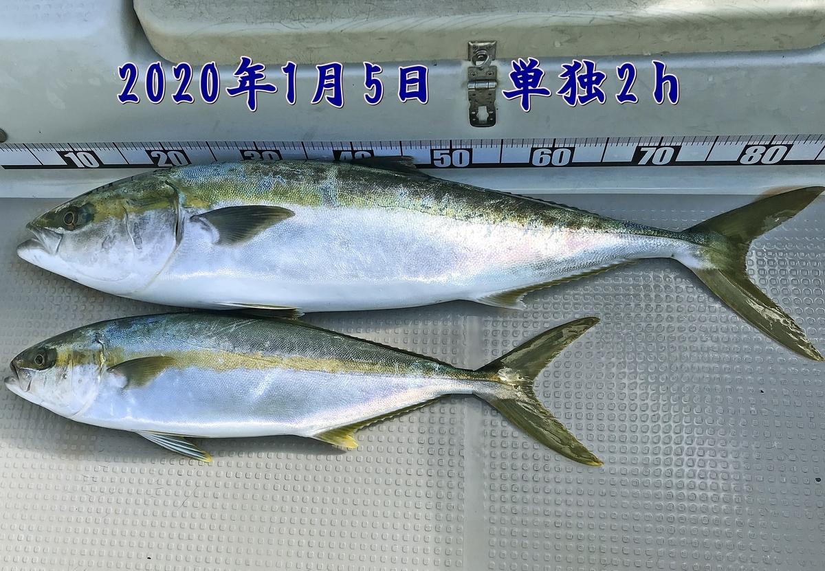 f:id:oka1man:20200106204344j:plain