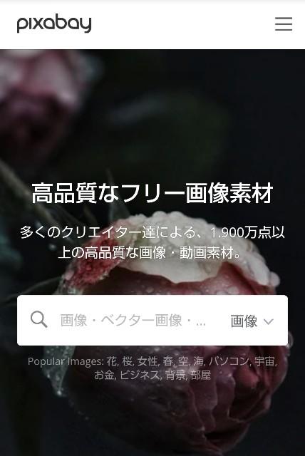 f:id:okabe-haruka:20210323085019j:plain