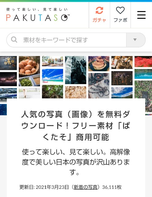 f:id:okabe-haruka:20210323223144j:plain